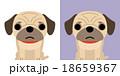 パグのキャラクター 18659367