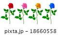 薔薇 開花 バリエーションのイラスト 18660558