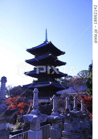 八事興正寺の風景 18662142