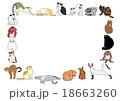 猫 ポーズ 枠のイラスト 18663260