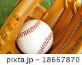 硬式野球ボールとグローブ 18667870