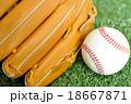 硬式野球ボールとグローブ 18667871