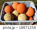 ハンドボール 18671256