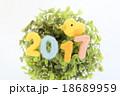 2017 鳥 酉年の写真 18689959