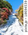 【栃木県日光市】奥日光・紅葉の湯滝 18694539