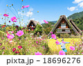 秋 合掌造り集落 白川郷の写真 18696276