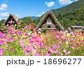 秋 合掌造り集落 白川郷の写真 18696277