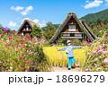 合掌造り集落 白川郷 田園風景の写真 18696279