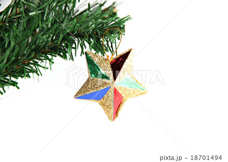 Star of colorful hanging on branch Christmas tree.の写真素材 [18701494] - PIXTA