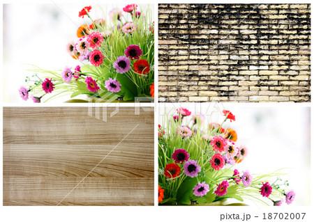 Concept of flowers and walls.の写真素材 [18702007] - PIXTA