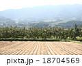 柿畑 18704569