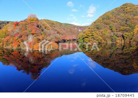 帝釈峡の紅葉 18709445