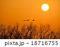 夕陽 日没 夕方の写真 18716755