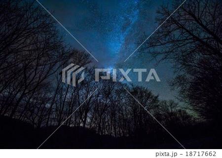 夜の林道 18717662