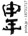 18731717