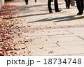 舗道の影 18734748