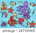 sea life group cartoon 18739463