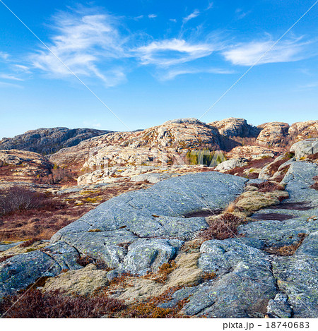 Norwegian landscape with red moss on rocks 18740683