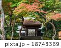 秋の鎌倉 円覚寺 居士林 18743369