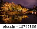 夕景の彦根城 紅葉の玄宮園 18749366