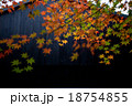 黒い建物と紅葉 18754855