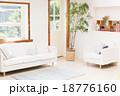 リビング 家 室内の写真 18776160