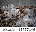 霜柱 18777146