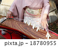 琴の演奏 18780955