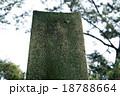 石碑 18788664