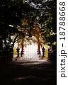 神社の坂縦向き 18788668