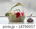 フラワーアレンジメント 薔薇 ウンベラータ ピエロ 18790057