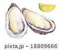 牡蠣とかぼす 18809666