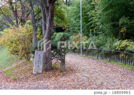 新井緑道 風土記の道 (兵庫県加古川市) 18809963