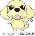 おじい犬 18812016