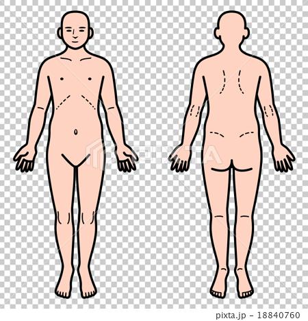 人體前後 18840760