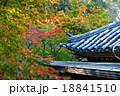 紅葉 屋根 瓦の写真 18841510
