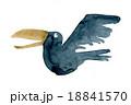 からす 烏 鳥のイラスト 18841570