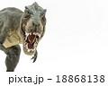 口を開けているティラノサウルスのおもちゃ 18868138