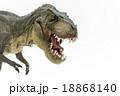 ティラノサウルスのおもちゃ 18868140