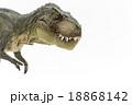 口を閉じているティラノサウルス 18868142