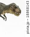 口を閉じているティラノサウルス 18868143