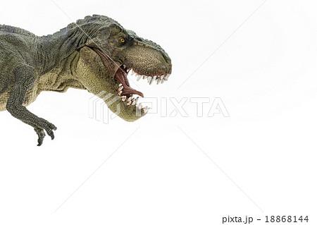 ティラノサウルスのおもちゃの写真素材 18868144 Pixta