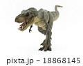歩いているティラノサウルス 18868145