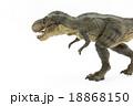 歩いているティラノサウルス 18868150