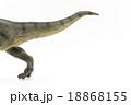 ティラノサウルスの尻尾 18868155