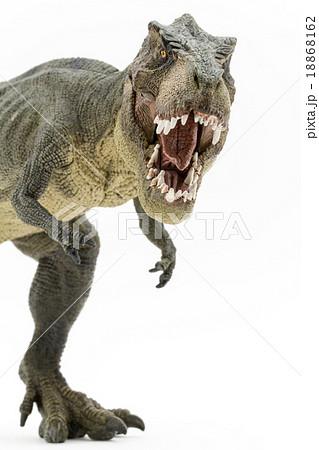 ティラノサウルスのおもちゃの写真素材 18868162 Pixta