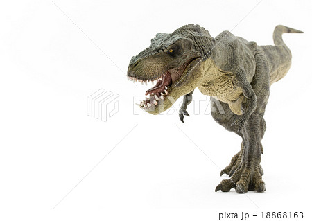 ティラノサウルスのおもちゃの写真素材 18868163 Pixta