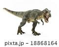 ティラノサウルスのおもちゃ 18868164