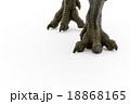 ティラノサウルスの脚 18868165