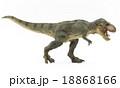 ティラノサウルスの全身 18868166